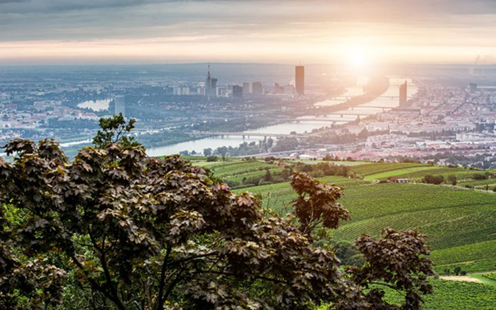 Bike routes in Vienna-Kahlenberg