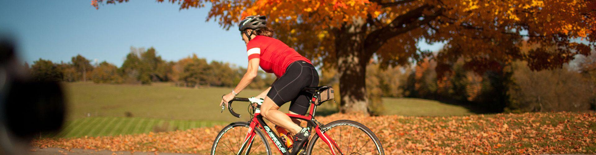 10 Radrouten für goldene Herbsttage