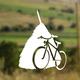 Transylvania Cycling guest