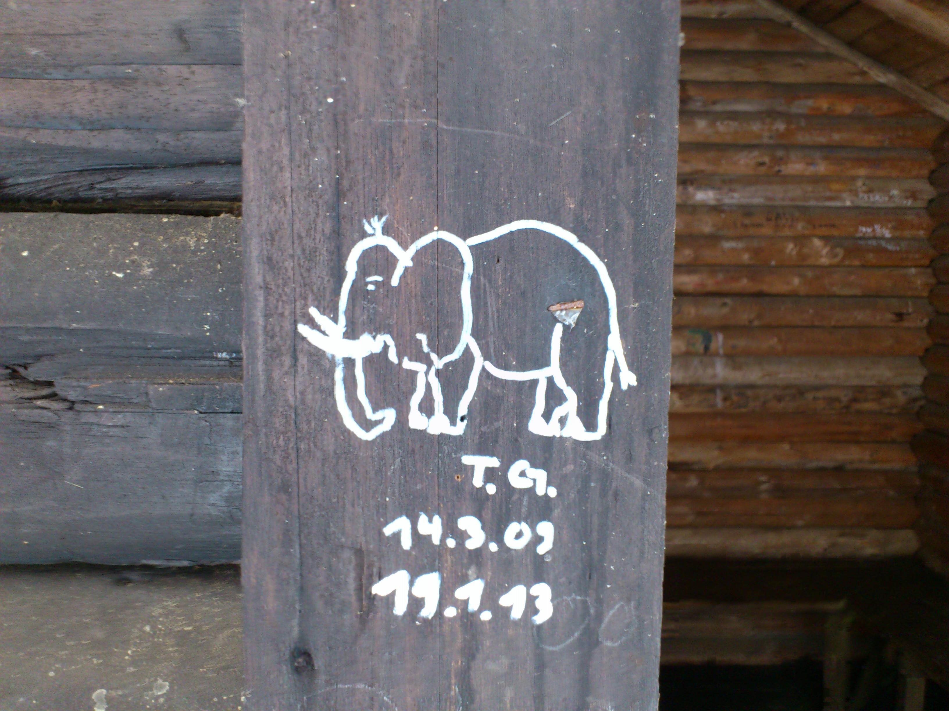 elefanttg
