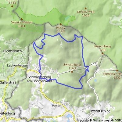 Hochwald-Mountainbike-Strecke
