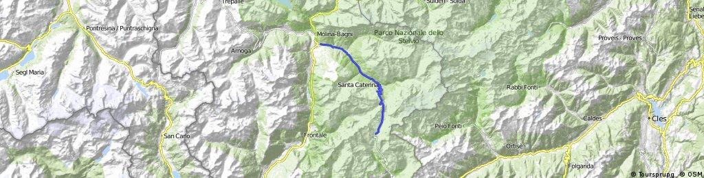 Salita al Passo Gavia