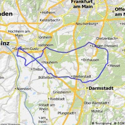 Bischofsheim - Messel und zurück