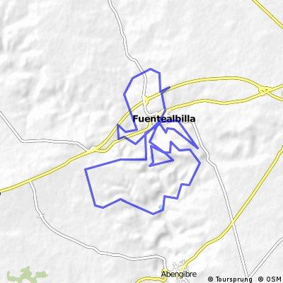 Fuentealbilla 2011