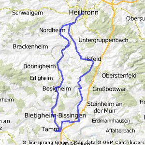 Tamm - BiBi - Lauffen- HN - Tahlh - 26.07.2011