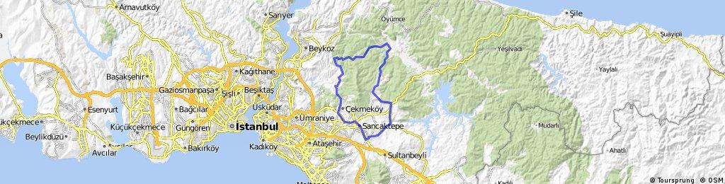 Polinez Ring (Death Route)