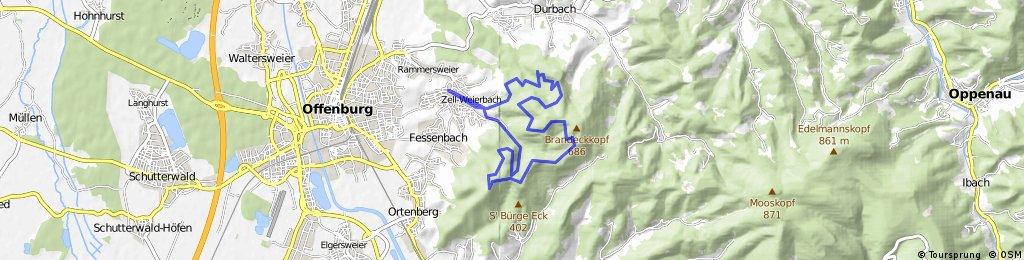 Donkey tail [Zell-Weierbach - Burschel - Wolfsgrube - Zeller Brunnen - Hirschquelle - Absoloms Grab - Fritscheneck - Hohes Horn - Burschel - Zell-Weierbach]