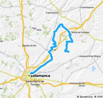 Salamanca-pitiegua (pequeño rodeo)