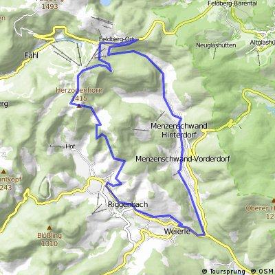 Kleine Tour im südlichen Feldberggebiet