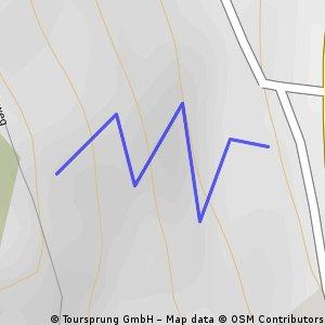 MTB 4Cross Strecke St.Margarethen