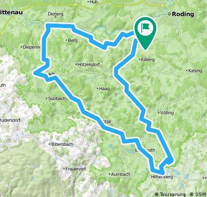 Berg - Wiesing Beucherling Wald Falkenstein