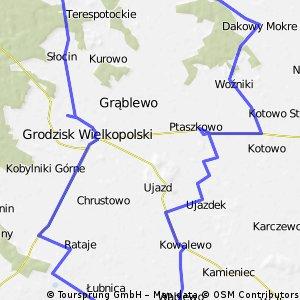Propozycja ciekawej wycieczki wokól Grodziska