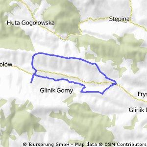 Gogołów - Wysokie - Bajorki - Gogołów