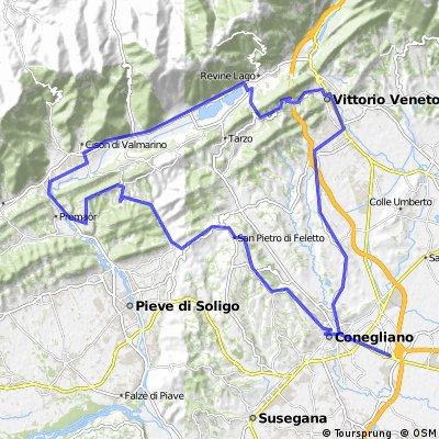 San Lorenzo, Rolle e Castello di Conegliano