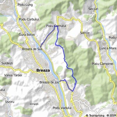 Nistoresti - Cornu - dirt road