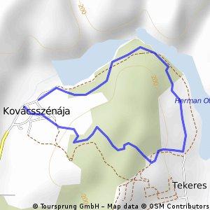 kovácsszénája-Tekeres- Kovácsszénája