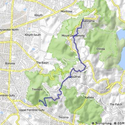 Kokoda Challenge by road!