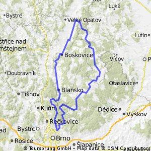 HorniStepanov133