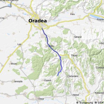 Oradea - Hidisel - Lazareni