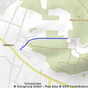 """""""Haldmer Hillsprint"""""""