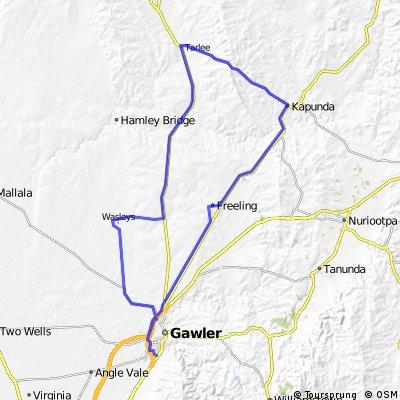Gawler Wheelers-ROUTE23C-Gawler-Freeling-Kapunda-Tarlee-Templers-Wasleys-Gawler-UNDULATING