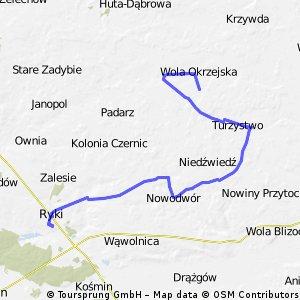 Ryki-Wola Okrzejska-Ryki