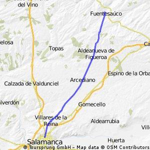 Salamanca-Fuentesaúco