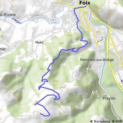PRAT d´ALBIS, Foix