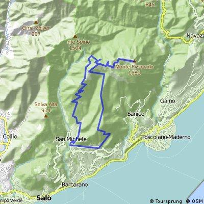 019 San Michele - cima Pizzocolo 1585 mt