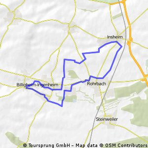 Feldwegrundfahrt Billigheim - Insheim