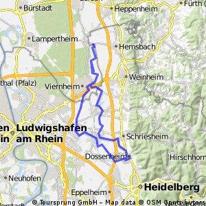 Flache 50km Dossenheim-Viernheim