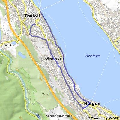 Thalwil - Horgen - Oberrieden - Thalwil (Laufen)
