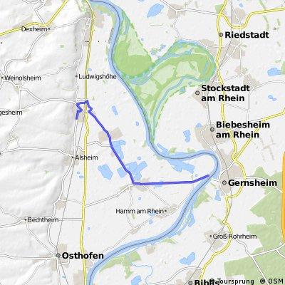 Rheinfähre Gernsheim-Gimbsheim-Haus Guntersblum