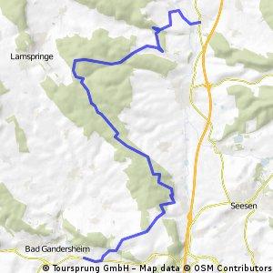 Bornum-Glashüttener Berg-Ruine Wohlenstein-Bad Gandersheim-Bornhausen-Bornum