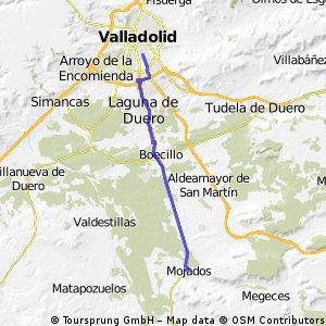 Valladolid - Mojados