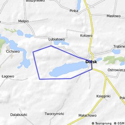 Dookoła jeziora Dolskiego Wlk.