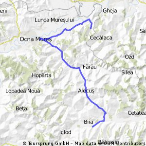 Sona-Ocna Mures-Gabud
