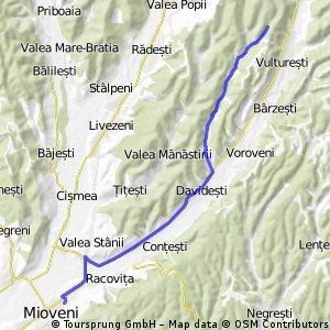 Mioveni-Huluba + drum forestier