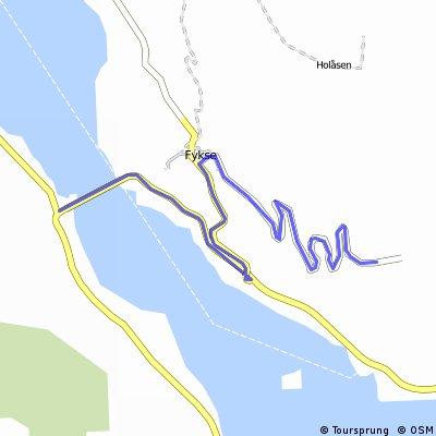 Bjørke fra Fyksebroen