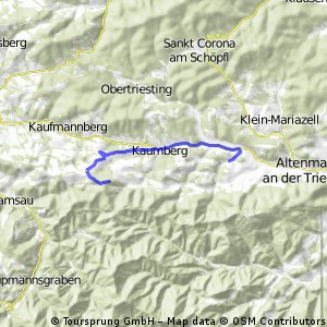 Thenneberg - Araburg