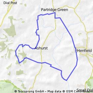 Henfield Loop