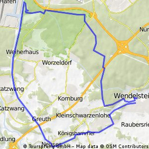 WW25Nbg.Föhrenbuck(Hafen)-Neuses-WStein