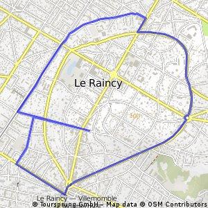 Tour du Raincy course à pied 6km