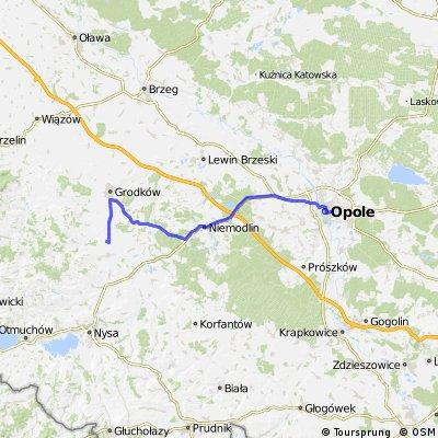 Opole - Chróścina, przez Wrzoski i Kopice