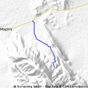 explanada mapimi puente