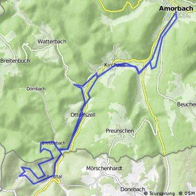 Rundfahrt nach Waldleiningen !