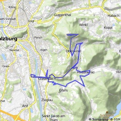Amadeohotel - Gaisberg Spitz über Höhenwald retour