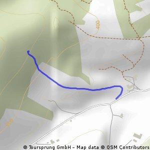 Weg zur Downhillstrecke von Welschensteinach aus