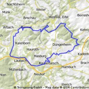 tour mtb über düngenheim