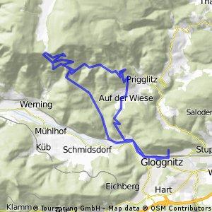 Gloggnitz-Waldburgangerhütte und zurück